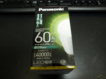 P3090124.JPG